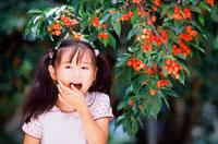 さくらんぼを食べる女の子