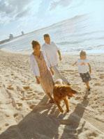 砂浜を歩く家族3人と犬