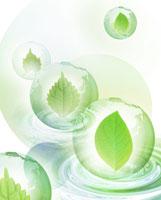 葉っぱのCGイメージ