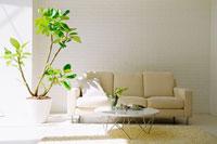ソファのあるリビングルーム 07135001268| 写真素材・ストックフォト・画像・イラスト素材|アマナイメージズ