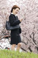 桜の下で携帯を見ているビジネスウーマン