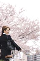 自転車を押して桜並木を歩くビジネスウーマン