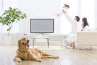 舌を出す犬と家族