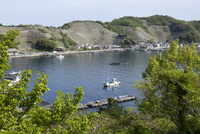 愛媛県 遊子水荷浦の風景