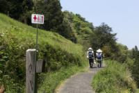 愛媛県 歩き遍路