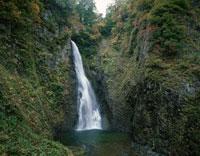 秋の白神山地暗門の滝 青森県