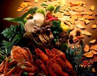 秋の産物集合