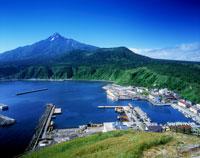 鴛泊港と利尻山
