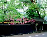 新緑の武家屋敷 20005003109| 写真素材・ストックフォト・画像・イラスト素材|アマナイメージズ