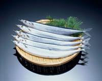 サンマ 20005003585| 写真素材・ストックフォト・画像・イラスト素材|アマナイメージズ