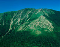 藥師岳より見た夏の早池峰山