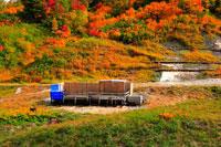 ふけの湯温泉の紅葉の露天風呂 20005005801| 写真素材・ストックフォト・画像・イラスト素材|アマナイメージズ