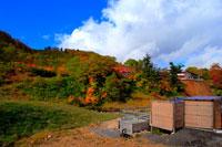 ふけの湯温泉の紅葉の露天風呂 20005005804| 写真素材・ストックフォト・画像・イラスト素材|アマナイメージズ