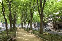 仙台市定禅寺通りオデュッセウス像