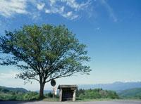 田舎のバス停 山形県