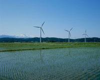 立川の風力発電 山形県