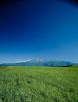 夏の鳥海山と草原 秋田県
