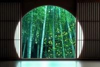 丸窓と竹林 20005010200| 写真素材・ストックフォト・画像・イラスト素材|アマナイメージズ