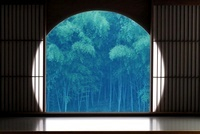 丸窓と樹木