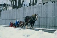 地吹雪体験ツアー 青森県