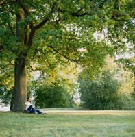 大木のそばに座る女性