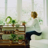 窓辺でグリーンの手入れをする女性
