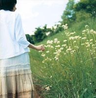 草原に咲く花に触れる女性