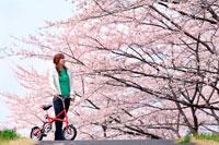 桜と自転車と女性