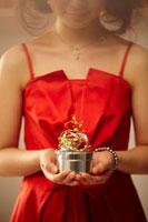 クリスマスプレゼントを持つ女性 20010003229| 写真素材・ストックフォト・画像・イラスト素材|アマナイメージズ