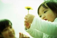 タンポポを持つ女の子と母親