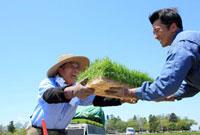 イネの苗を渡す笑顔の農夫