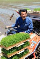 機械で田植する農夫の笑顔