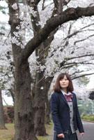 桜並木の前に立つ女子高生