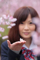 手のひらに桜の花をのせる女子高生