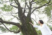 大木の前に立つ女性