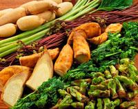 春の野菜集合