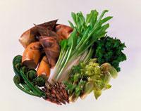 春野菜集合