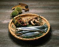 秋の味覚 20013005593| 写真素材・ストックフォト・画像・イラスト素材|アマナイメージズ