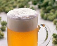 ビール、ホップ 20013010137| 写真素材・ストックフォト・画像・イラスト素材|アマナイメージズ