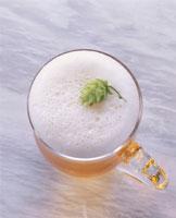 ビール、ホップ 20013010139| 写真素材・ストックフォト・画像・イラスト素材|アマナイメージズ