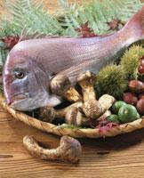 秋素材集合(鯛) 20013013869| 写真素材・ストックフォト・画像・イラスト素材|アマナイメージズ