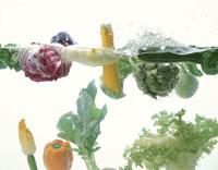 野菜集合(水槽)