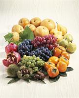 秋の果実集合