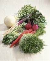 京野菜集合