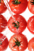 トマト 20013014525| 写真素材・ストックフォト・画像・イラスト素材|アマナイメージズ