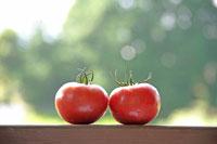 トマト 20013014544| 写真素材・ストックフォト・画像・イラスト素材|アマナイメージズ