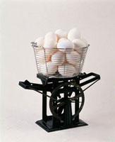 秤にのせた卵 20013018180| 写真素材・ストックフォト・画像・イラスト素材|アマナイメージズ