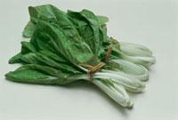 雪白体菜(中国) 20013020288| 写真素材・ストックフォト・画像・イラスト素材|アマナイメージズ