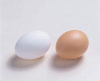 卵 20013023318| 写真素材・ストックフォト・画像・イラスト素材|アマナイメージズ