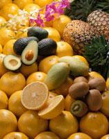 トロピカルフルーツ集合